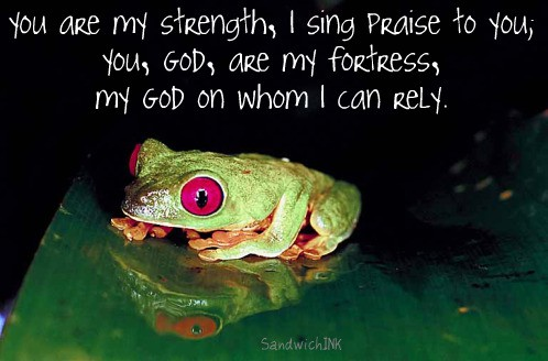 An encouraging Bible verse to remind us to FROG - Fully Rely On God