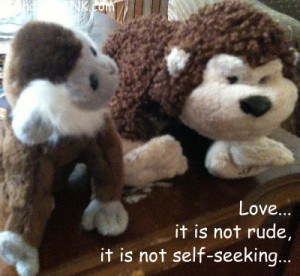 Each cute Webkinz cheeky monkey reminds us love is not rude