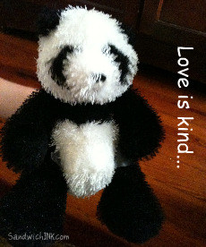 Love is always patient and kind - Love never fails - illustrated by this cute Panda - Webkinz Panda