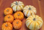 My grandkids preferred the real fall pumpkins for their table decorations