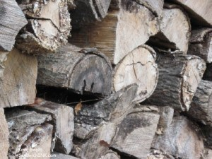The wood is stacked and ready for winter in the woodstoves