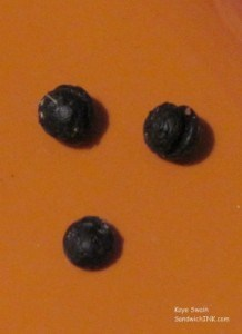 The size of raisins - these were unreachable - till I grabbed my senior moms extended long reach tool