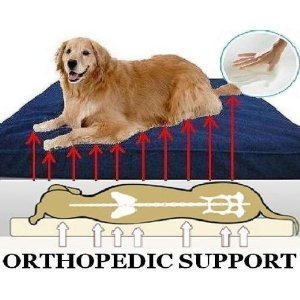 My granddog who is older and has bone issues would really love this extra large orthopedic memory foam dog bed