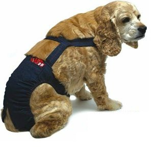 Perfect for my sandwich generation family who loves their side and full elastic waist jeans and pants - jean piddle pants for dog and granddog incontinence