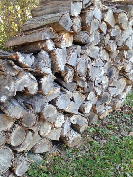 As you can see from the photo in my easy to use digital camera - the logs for the Sandwich Generation granny nanny are STILL ready for winter emergencies with some in the garage and the fire starter in the living room