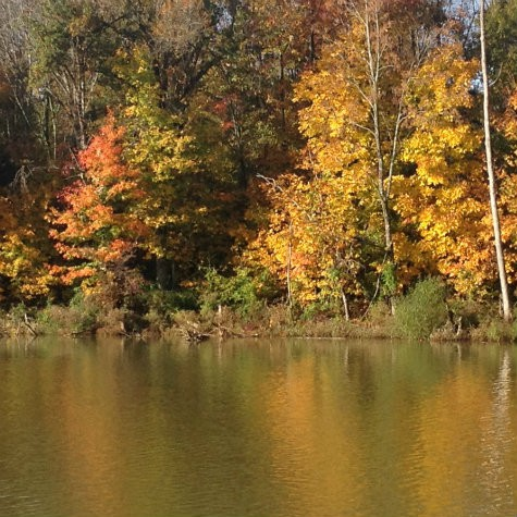 Restful water and autumn bliss - rests the eyes and is a sweet way of caring for the caregiver