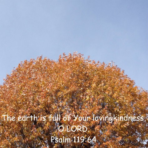 Encouraging Bible verses and lovely autumn tree with fall foliage - a delightful Thanksgiving placecard for the Sandwich Generation