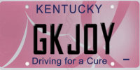 Grandkid Joy license plate - available in Kentucky for any grandparent living there who wants it