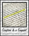 Scripture and a Snapshot to encourage the Sandwich Generation with encouraging and comforting Bible verses