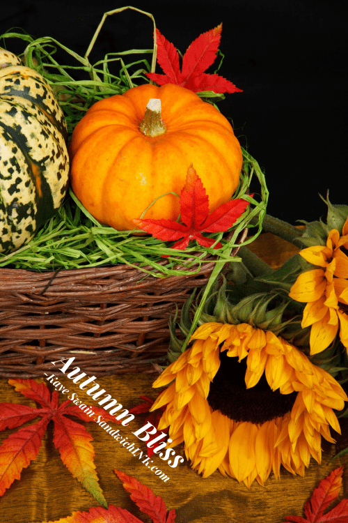 Autumn greetings from Kaye Swain blogger and REALTOR in Roseville CA