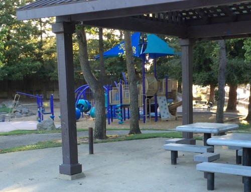 swing sets in the back yard and the park are grand for grandkids