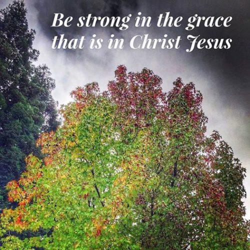 christian-blogger-realtor-kaye-swain-roseville-ca-sharing-inspiration