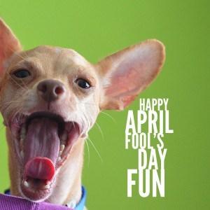 SandwichINK April Fools Fun via Kaye Swain Roseville CA real estate agent and blogger