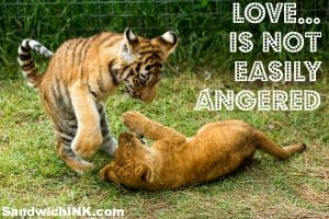Love is not easily angered - a great Bible memory verse for toddlers preschoolers