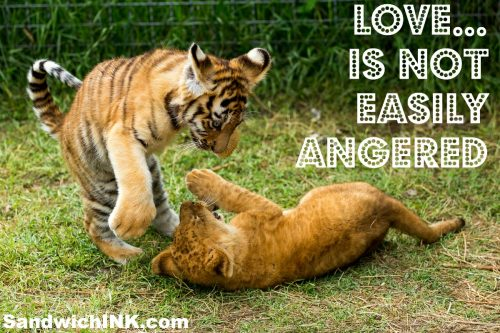 Love is not easily angered Bible memory verse for kids grandkids