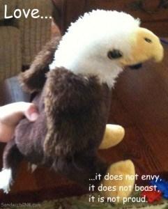 Eagle Webkinz - Love is not proud