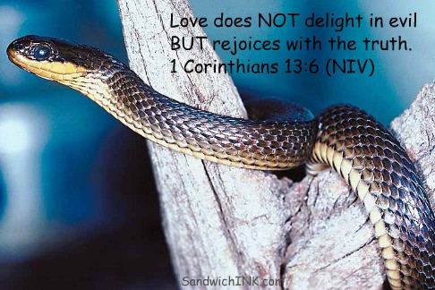 Love from 1 Corinthians 13 4-8 and 13 - Love does NOT delight in evil is illustrated by this snake and our Webkinz tiger snake