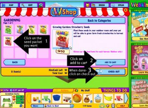 Time to buy the seeds for your Webkinz Stuffed Animals garden