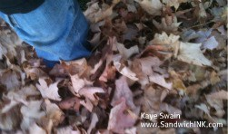 We had so much fun with crunchy leaves and tag activities for Sandwich Generation grandparents and their grandchildren