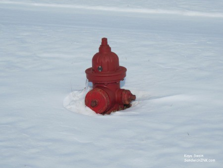 My senior mom and I had a good time laughing at this cute RED fire hydrant - gardening in the snow perhaps
