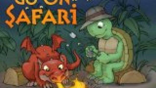 donita k paul has written cute Christian dragon stories for young children with a positive moral - I love using short stories to develop children's reading skills
