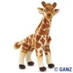 Webkinz stuffed animals like this adorable Webkinz giraffe are fun for the grandkids and its easy to buy Webkinz animals like this online - just click here