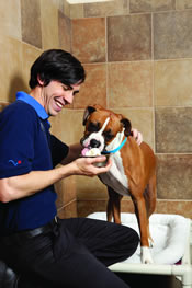 Pet Smart Pet Hotel has well-trained staff and can be a great help to the Sandwich Generation caring for an elderly parents granddog