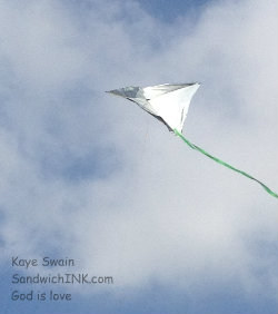 Thanks to the easy kites for kids at Walmart - we had plenty of simple kite flying fun