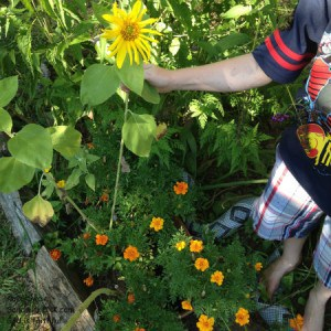 My grandson is showing off my senior moms gardening activities- one of the many joys for our Sandwich Generation family