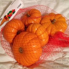 The Sandwich Generation granny nanny LOVES these cute little pumpkins