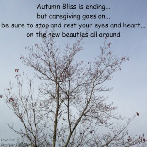 Caring for the Sandwich Generation caregiver - take time to smell the roses or enjoy approaching winter stillness