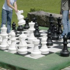 Not cheap - but this is definitely a cool looking chess set to share with the grandkids