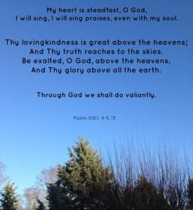 Love the sunshine in Pierce County Washington and love the SONshine in Psalm 108