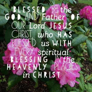 Encouraging and comforting Bible verses for the Sandwich Generation-Rhododendrons