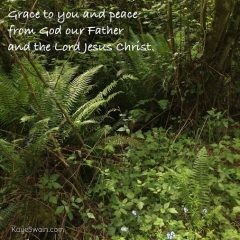 Grace to you from Ephesians Part 1 for Kaye Swain grandkids and senior parents and readers