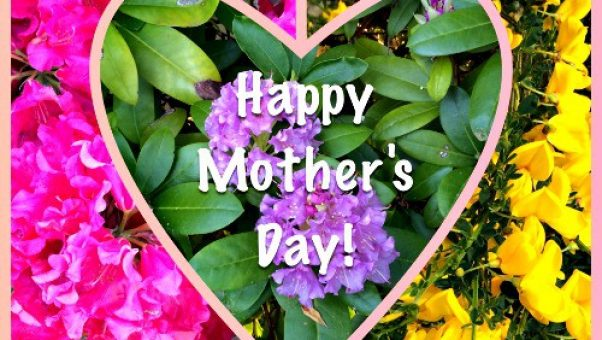 Happy Mothers Day 2014 from Kaye Swain REALTOR and blogger at SandwichINK in Pierce County Washington