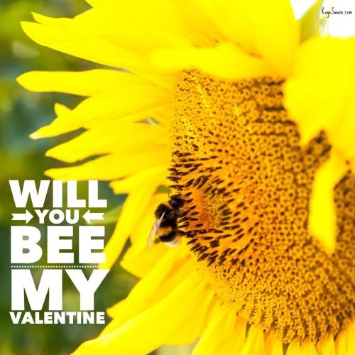 Kaye Swain Roseville Sacramento real estate agent cute valentines ideas