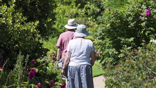 fun activities for senior citizens