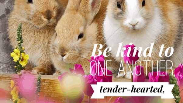 Be kind and gentle like bunnies SandwichINK caregivers 1