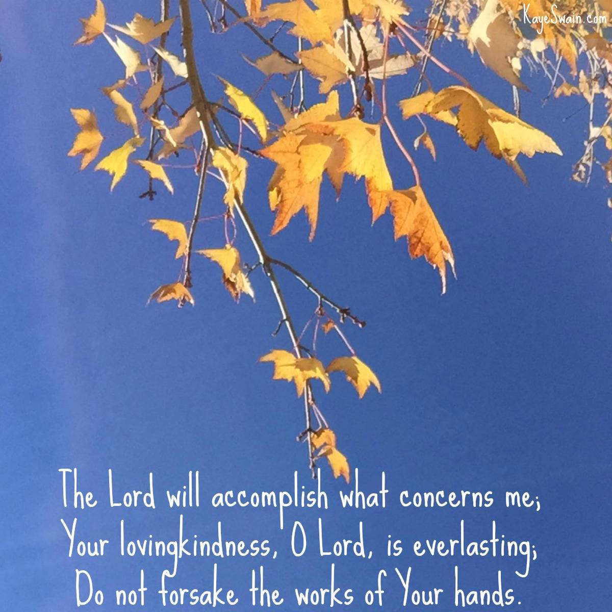 Sweet Words of Comfort as Thanksgiving Draws Near ...